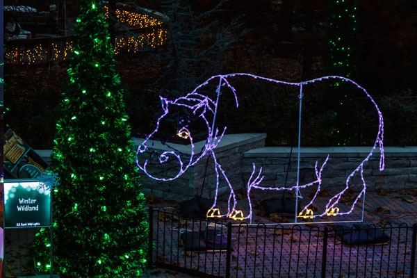 Christmas Light Displays In St Louis.Holiday Light Displays St Louis 2018 Stlparent Com